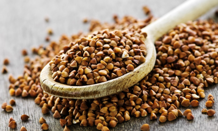 What is buckwheat?